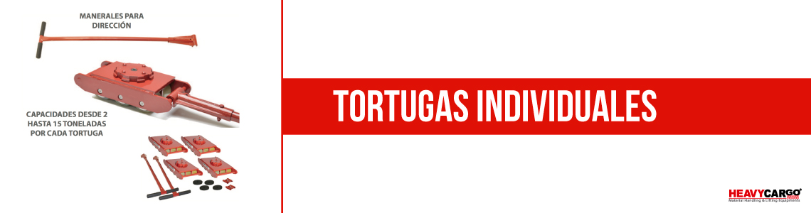 Tortugas-Individuales